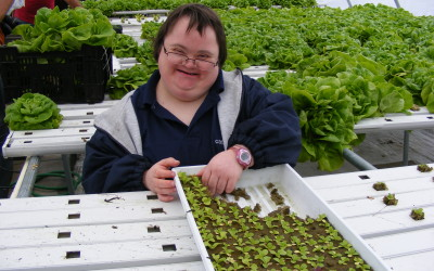 Cape Abilities Farm Tour: Changing Lives