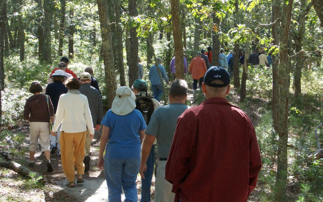 Harwich Conservation Trust: Conserve Land and Explore Their Trails