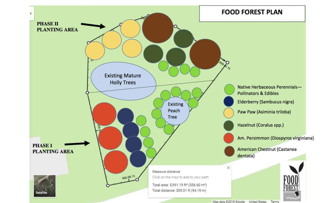 Interpretive Food Forest Exhibit