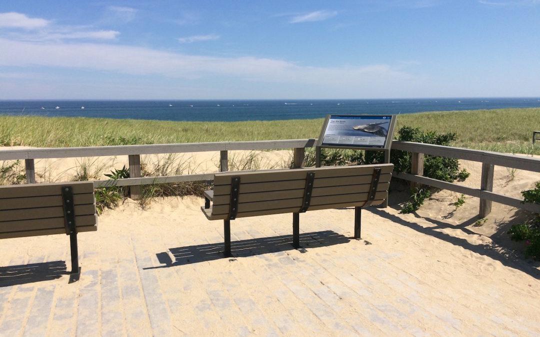 Cape Cod Whale Trail – Interpretive Signage
