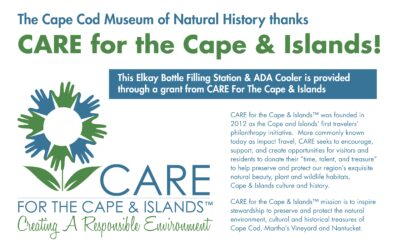 Water Bottle Filling Station – Cape Cod Museum of Natural History